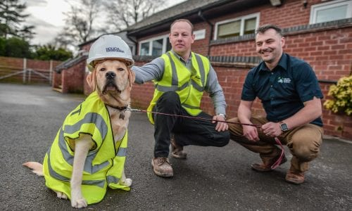 Vet with builder and dog dressed as builder